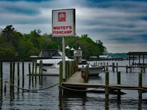 Whitey's Fish Camp