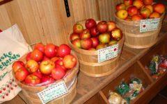 Friske Orchards - Michigan Apples